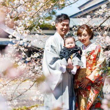家族で結婚の記念に撮影した桜ロケーションフォト
