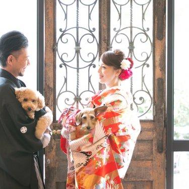 オシャレなスタジオで2匹の犬と一緒に撮った結婚写真