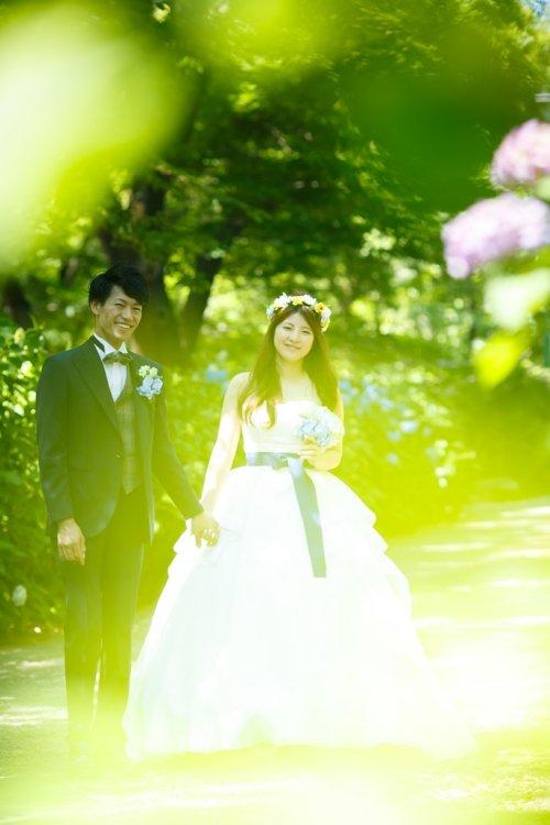 緑が反射している鶴舞公園のキラキラ光るロケーションフォト