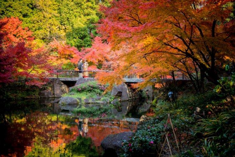 徳川園のキレイな庭園をバックに紅葉ロケーションフォトを撮る