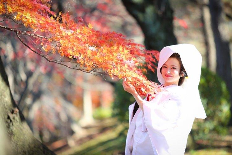 紅葉と白無垢姿の美人な新婦さん