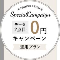 データ2点目0円キャンペーン適用プラン