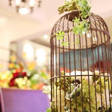 スタジオに置いてある鳥の籠
