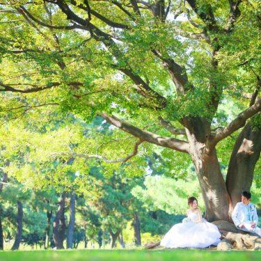 新緑の綺麗な大きな木の下に座っている新郎新婦
