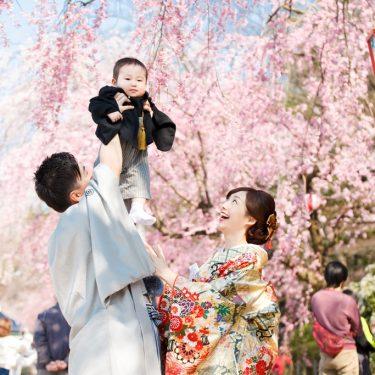 桜の木の下お母さんとお父さんに持ち上げらたかわいい男の子