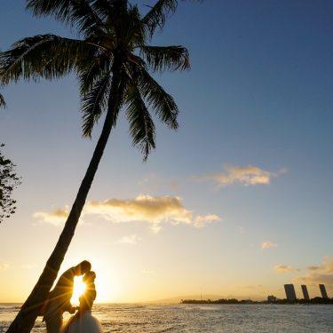 ハワイと言えばヤシの木!ヤシの木の下で撮影した結婚写真