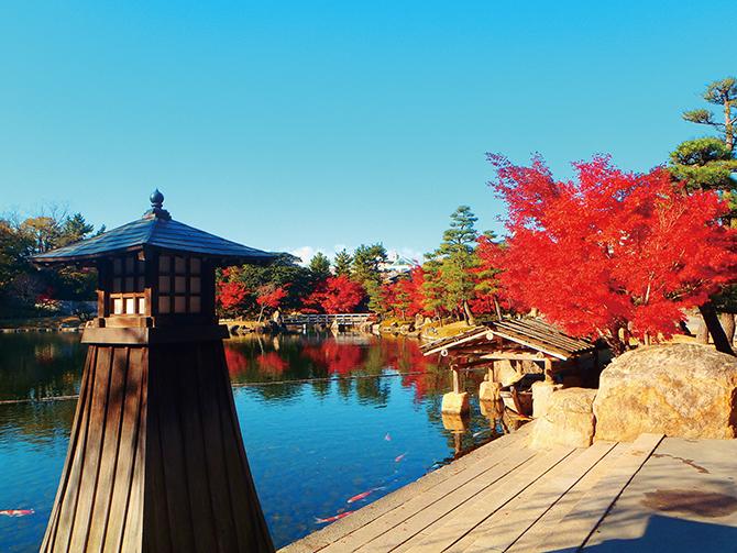徳川園の紅葉ロケーションフォトスポット