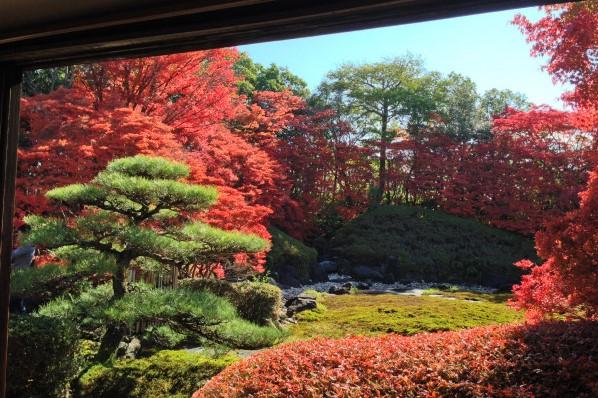 紅葉がキレイな和装ロケーションフォトスポットどうだん亭