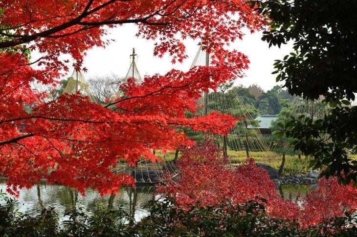 白鳥庭園の紅葉スポットは、和装前撮り写真が映える場所