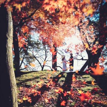 名古屋のおススメ紅葉ロケーションスポットで撮影した前撮り写真