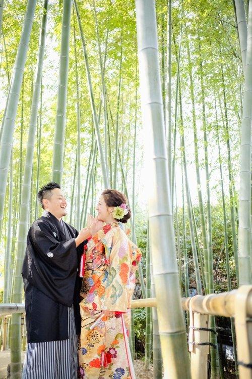 竹林は年中通してたくましくのびやかに