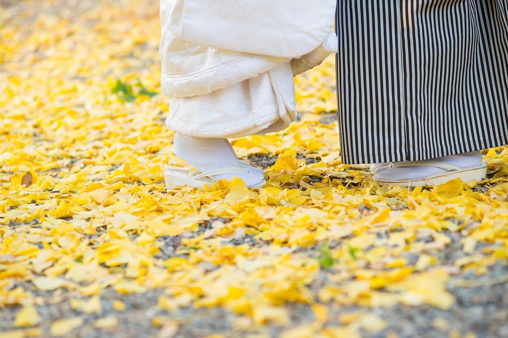 銀杏の絨毯が美しい中村公園での前撮り