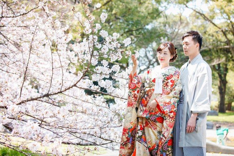 お温かい日差しと桜に包まれて和装撮影