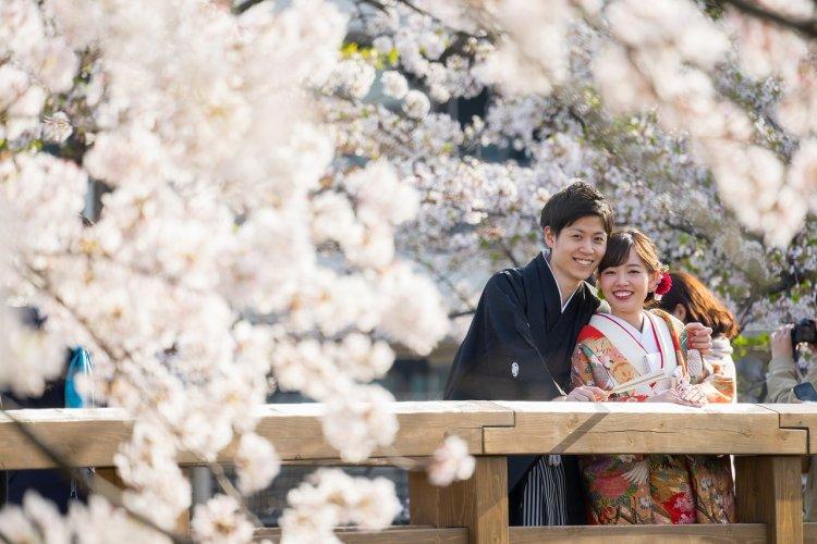 出会いの場所は桜が咲く山崎川で