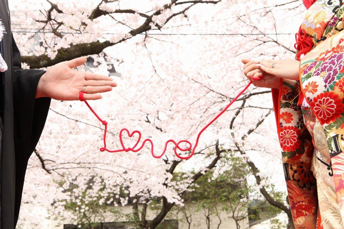 桜満開の和装前撮り