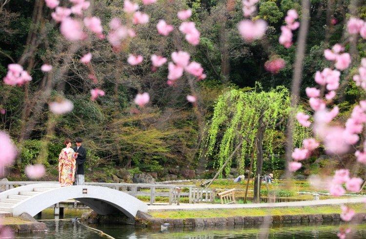 河津桜と新郎新婦
