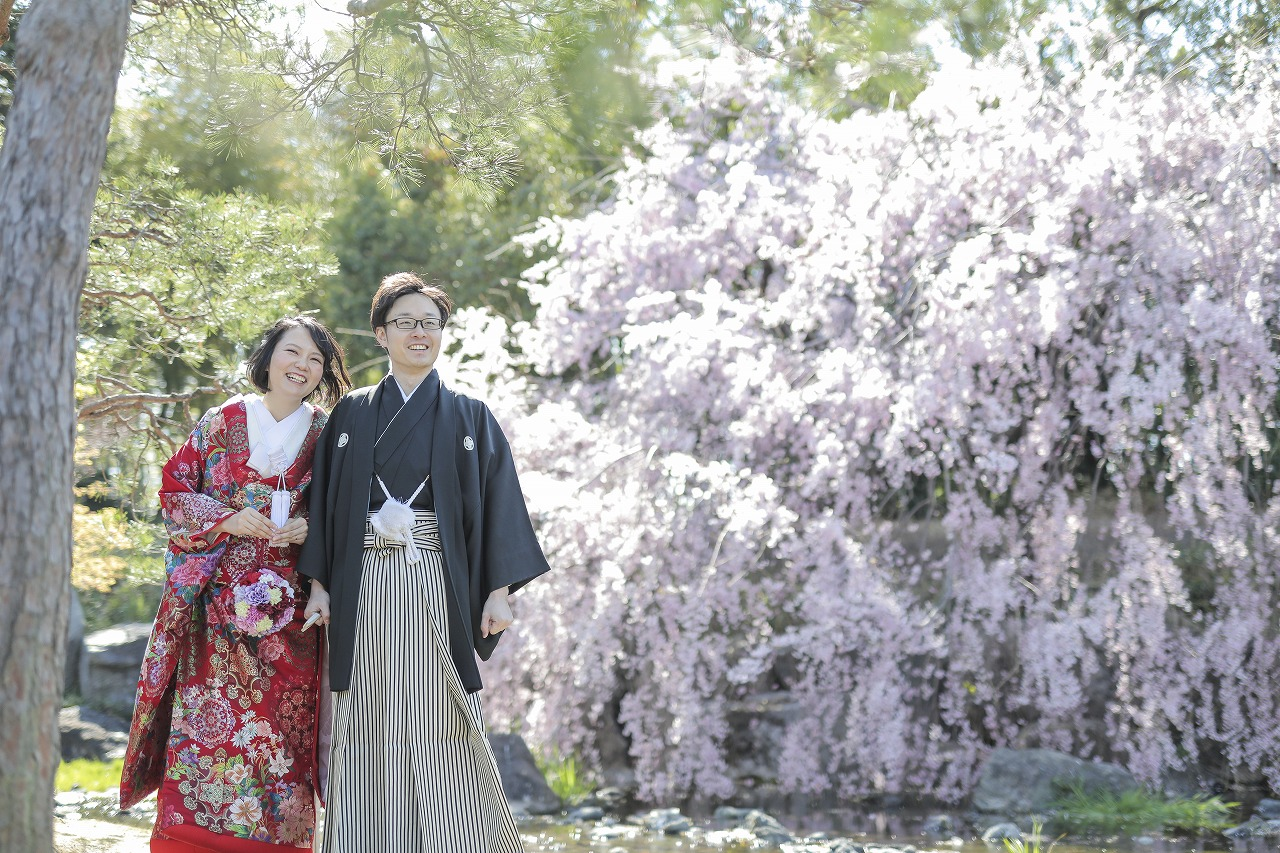 桜満開!圧巻の白鳥庭園で撮影