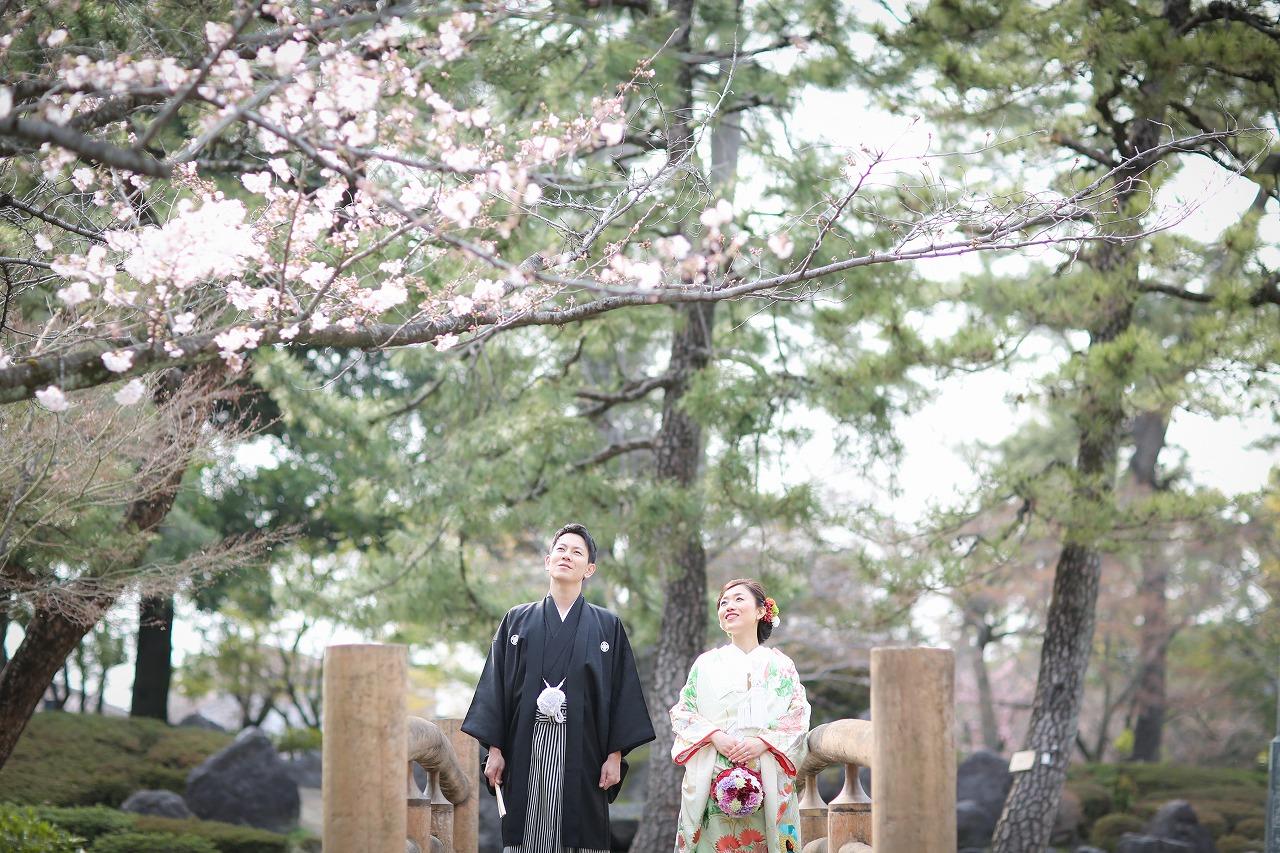 念願の桜とロケーション和装撮影