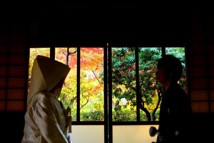 窓から見える紅葉