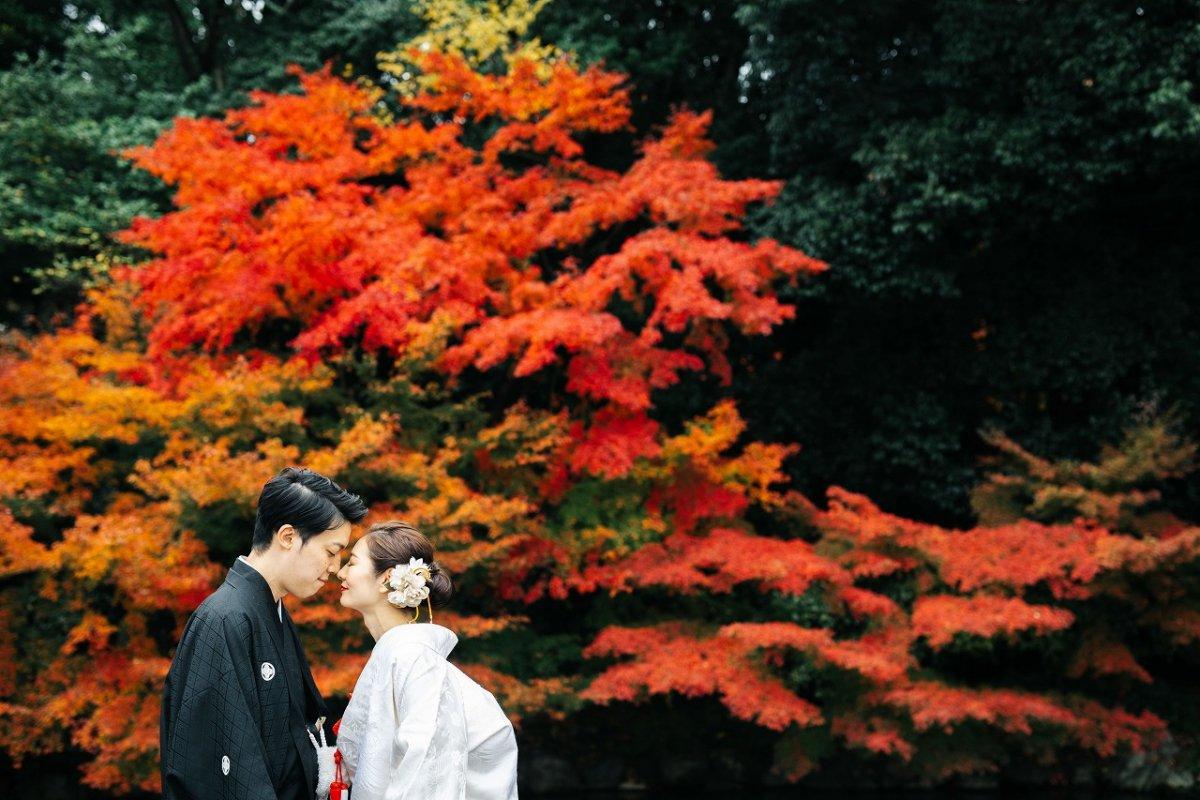 真っ赤にそまった紅葉で前撮り