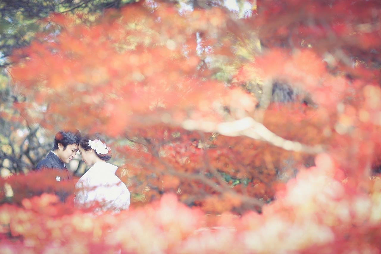 紅葉×白無垢が圧巻の結婚写真