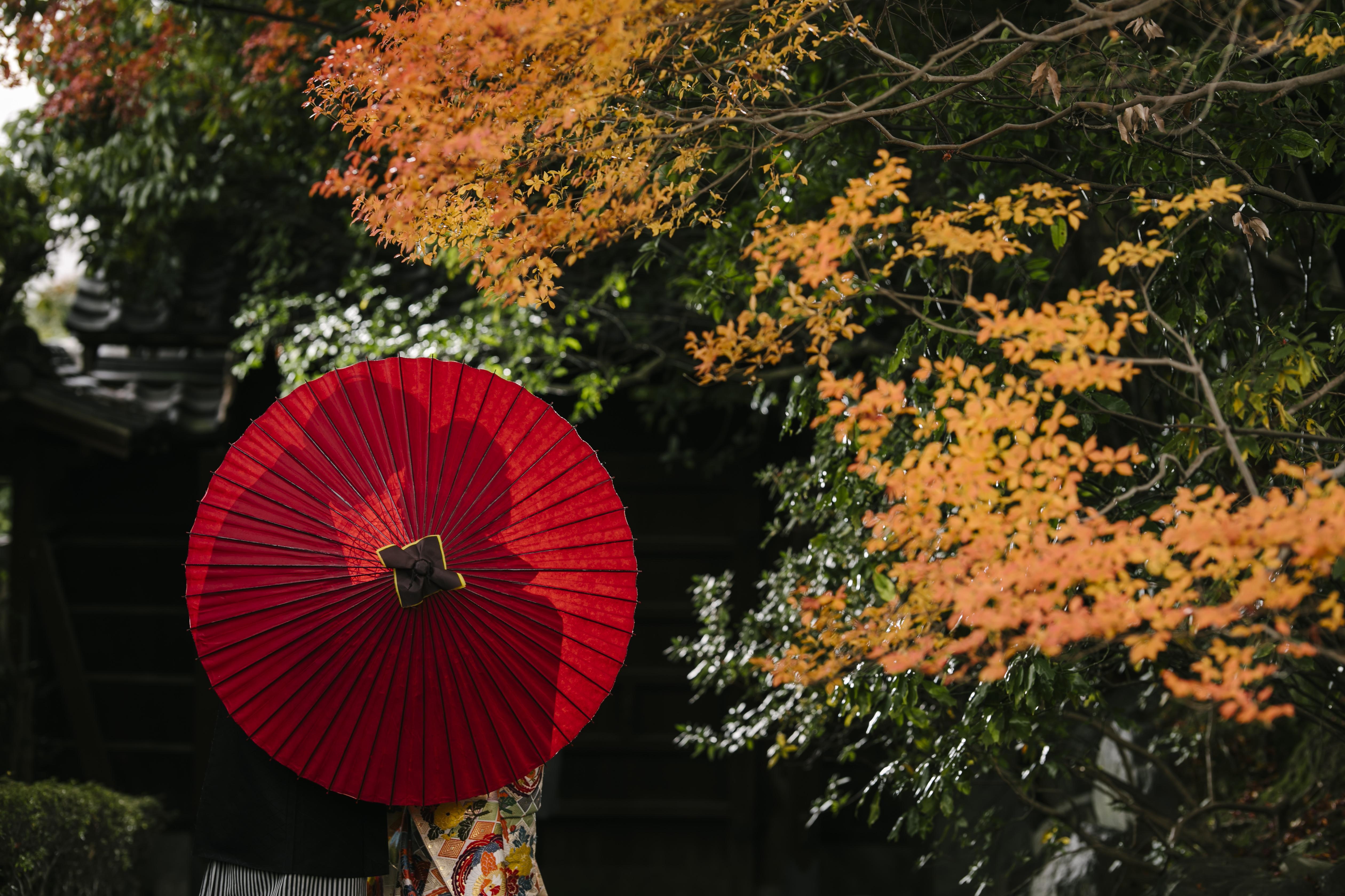 紅葉が美しいどうだん亭で和装前撮り