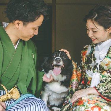 新郎新婦に愛される可愛い愛犬