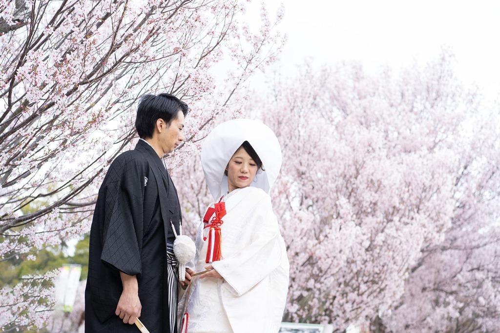 綿帽子&桜で上品なはんなり和装撮影♡
