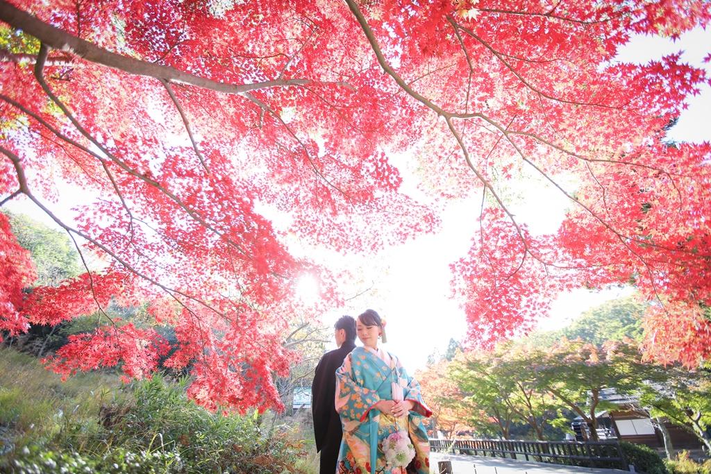 宗節庵のキレイな紅葉をバックに撮った結婚写真